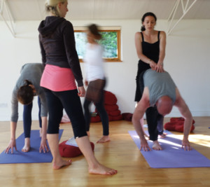 yoga teacher training london sadhaka yoga centre