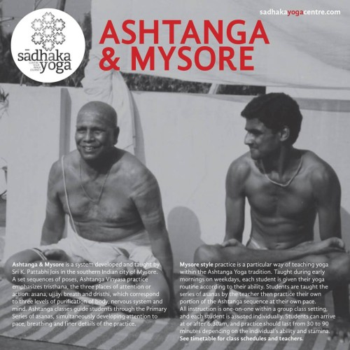 Mysore Style Ashtanga Yoga at Sadhaka